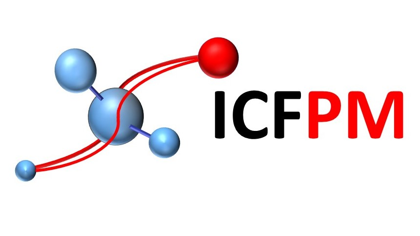 ICFPM, International Conference on Fine Particle Magnetism