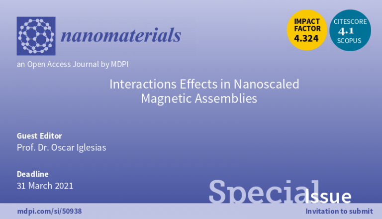 Interaction effects on nanoscaled magnetic assemblies